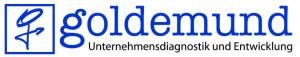 Goldemund Consulting | Der Sparringpartner im Denkprozess.